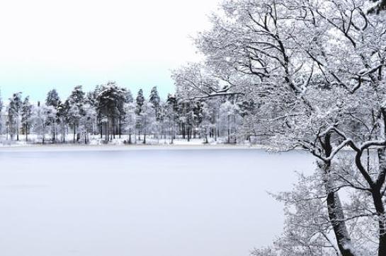 Brianna-White-winter