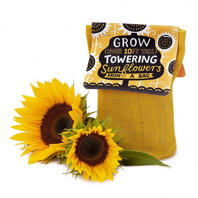Grow-Your-Own-Sunflowers-Stocking-Stuffers